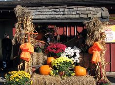 falldecoratingideas fall st jacobs fall decorations - Harvest Decorations