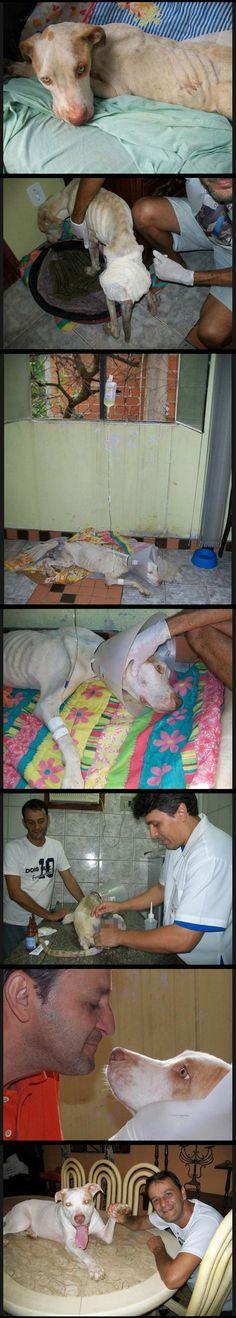 Wonderful Man Takes in Abandoned Dog « mashtop