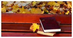 36 Ways To Have A More Bookish Fall