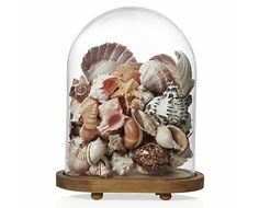 |Oval Bell Jar|  cute for the shells you find on the beach :)