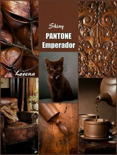 Emperador - this has been the lead color for my own home decor for the past two years in our remodeling or simple decor. I have loved this theme for quite some time - so I am happy to see it receiving more attention. Colour Schemes, Color Trends, Color Patterns, Color Combinations, Brown Pantone, Pantone Color, Colour Board, Color Box, Brown Aesthetic