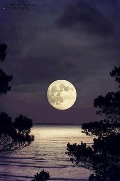 Moon reflection by angelica