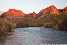 Salt River #Arizona