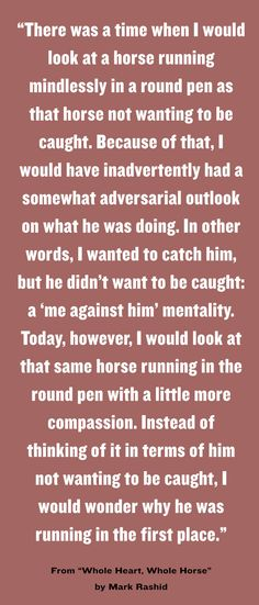 This horse quote really makes you think!