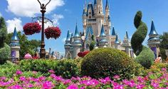 6 Things You Absolutely Need for the Disney College Program Disney World Trip, Disney Parks, Disney College Program, Tale As Old As Time, Disney Shirts, Disney Love, Fall 2018, Disneyland, All Things