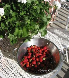 Thursday Favorite Things Blog Hop 192 - our first pick fromt he garden Katherines Corner