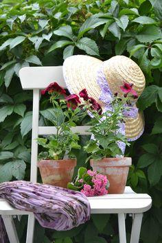 Terra Cotta, Grandmas Garden, Garden Cottage, Garden Chairs, Garden Seat, My Secret Garden, Dream Garden, Garden Plants, Potted Plants