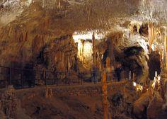 The Caves of the Karst Plateau, Slovenia