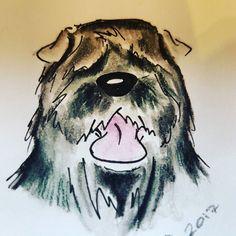 #bouvierdesflandres #crufts #cartoons #inktensepencils #artshow #artsy #doodle #artminiature #dogscorner #doggy