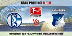 Prediksi Bola Schalke 04 vs Hoffenheim 19 Desember 2015