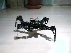 This quadruped robot is super slick!