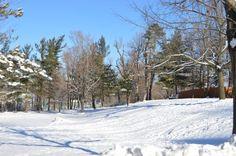 Winter Date: Go Sledding!