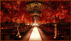 This is breathtaking. If you're gonna do a Fall wedding, you better do it right.
