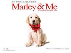 🎥 Marley & Eu - Assistir Filme Completo Dublado -  /  🎥 Marley & Me - Watch Dubbed Full Movie -