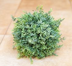 Boxwood Ball 25cm