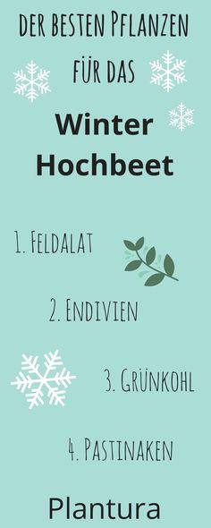 Auch im Winter lässt sich das Hochbeet vielfältig bepflanzen. Hier erfahrt Ihr, wie und mit welchen Pflanzen!