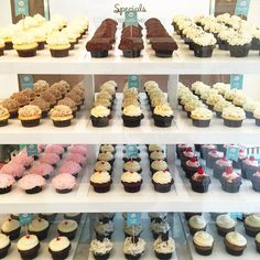 which one should I get... @trophycupcakes