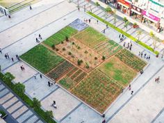 An urban farm was recently planted right in the heart of downtown Shenzhen, China as part of the Shenzhen & Hong Kong Biennale of Urbanism/Architecture. The installation, called Landgrab City, is a square plot of land that represents a map of the city and visualizes how much food is required to sustain it.