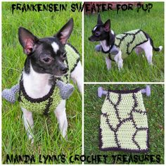 MandaLynn's Crochet Treasures : Frankenstein Sweater for Pup