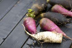 Blackberry Farm: Turnips