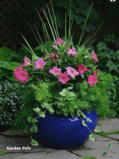 Container gardening, a host of beautiful gardening tips, pin number 7255627801 Plant Design, Garden Design, Garden Planters, Outdoor Planters, Porch Planter, Fall Planters, Potted Plants Patio, Flowering Plants, House Plants