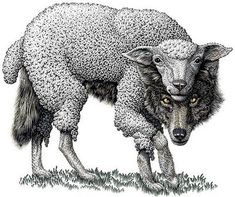 108 Best Wolf in Sheeps Clothing-Matthew 7:15-20 images | Wolf ...