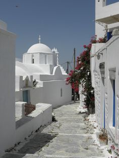 Peter Sommer Travels - the specialist in expert-led tours Travel Around The World, Around The Worlds, Greece Islands, Beautiful Places To Travel, Greece Travel, Santorini, Travel Inspiration, Taj Mahal, Places To Visit
