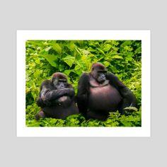 #INPRNT #fine art #print #poster #art Forest And Wildlife, Pet Monkey, Print Poster, Safari, Fine Art, Art Prints, Printed, Gallery, Paper
