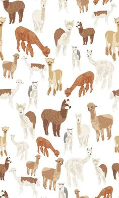 Alpaca Wallpaper, designed by artist Kate Golding and printed with love by WYNIL in Montreal, worldwide shipping. Boho accent wall idea for the home! Phone Wallpaper Boho, Animal Wallpaper, Phone Backgrounds, Wallpaper Backgrounds, Commercial Wallpaper, Cute Alpaca, English Country Style, Prepasted Wallpaper, Canadian Artists