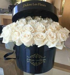 Find images and videos about white, flowers and rose on We Heart It - the app to get lost in what you love. Luxury Flowers, Exotic Flowers, My Flower, Pretty Flowers, Fresh Flowers, Deco Floral, Arte Floral, White Roses, White Flowers
