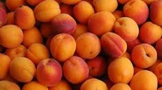 Find out all the health benefits of the delicious apricot. They are full of health benefits and can help you become a Health Hero Apricot Scrub, Apricot Recipes, Environmental Portraits, Container Gardening Vegetables, Farmers Market, Fresh Fruit, Food Pictures, Wine Recipes, Health Benefits
