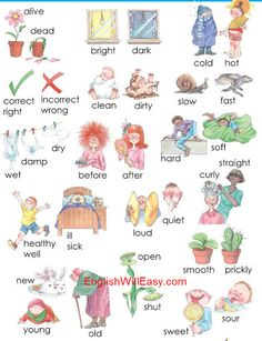 Opposites Words by Picture for Kids - Dictionary for Kids