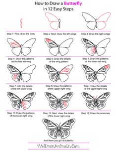 Exciting Learn To Draw Animals Ideas. Exquisite Learn To Draw Animals Ideas. Easy Drawing Steps, How To Draw Steps, Step By Step Drawing, Easy Drawings, Butterfly Painting, Butterfly Art, Butterflies, How To Draw Butterfly, Easy Butterfly Drawing