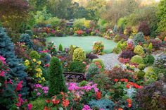"""So dreamy, you might be tempted to think this U.K. winner of """"Overall Gardener of the Year"""" of the Garden News National Garden Competition 2010 AND the Daily Mail National Garden Competition is a Hollywood Photoshop creation!"""