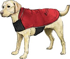 For those frigid days when fur's not enough, suit your dog up for action in the Scout's Shoreman's Dog Fleece Jacket. Get it only at Duluth Trading.