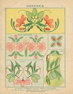 Art Nouveau Pattern, Art Nouveau Design, Art Deco, Floral Illustrations, Botanical Illustration, Illustration Art, Art Pictures, Art Images, Tarot