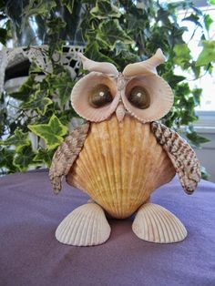 An owl I made out of seashells.