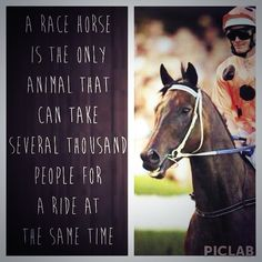 Best horse racing quote EVER!great fun in this sports.both emotional and physical,you can exactly get what you want in this thrilling sports ever,