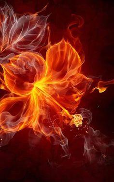 Fantasy Landscape, Fantasy Art, Cute Wallpapers, Wallpaper Backgrounds, Just Like Fire, Flame Art, Fire Flower, Guard Your Heart, Smoke Art