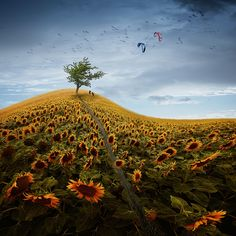 Wolkenstürmer by Christine Ellger Fine Art Photo, Surrealism, Vineyard, Fantasy, Explore, Mountains, Landscape, Illustration, Artist