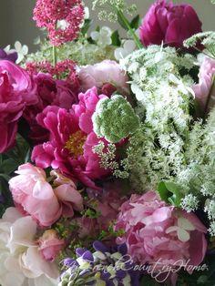 roses from my garden - Sharon Santoni