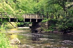 This reminds me of the places we would visit every summer while I was growing up.  My favorite memories is the sound of the creek and the feel of the wind. Deep Creek, Bryson City NC