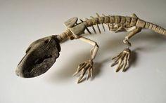I relitti fluviali e gli scheletri restituiti al mondo #arte #scultura #design #artistiitaliani