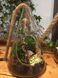 Mini-jardin atelier-vegetal.ch