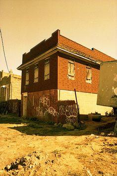 20121013_012 by k_dellaquila, via Flickr  | #earthtones #brown #gold #tan #rust #orange