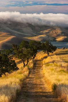 Morning Hike On Vista Grande Trail| California (by Marc Crumpler)