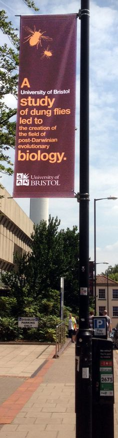 Lamp post banner university of Bristol<br> Mesh Banner, Pvc Banner, Bunting Banner, Pole Banners, Vinyl Banners, Street Banners, Free Artwork, Outdoor Banners, Banner Printing
