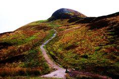 West Highland Way near Conic Hill.