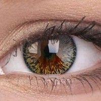 Elegance Brown Colour Contact Lenses