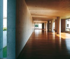 Fabulous space designed by Tadao Ando.